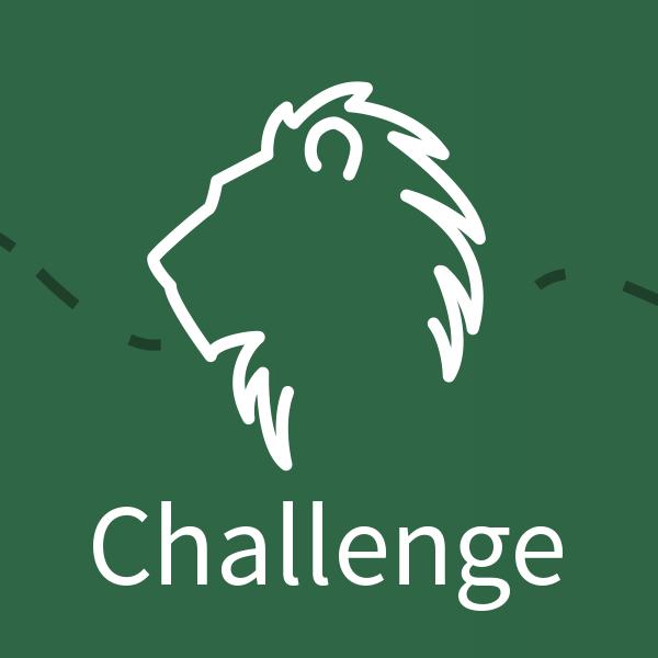 Spiel-Element Challenge: Das 3. von 5 Elementen